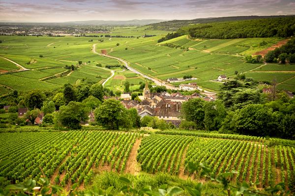 Korting 4 of 5 dagen in de Bourgogne