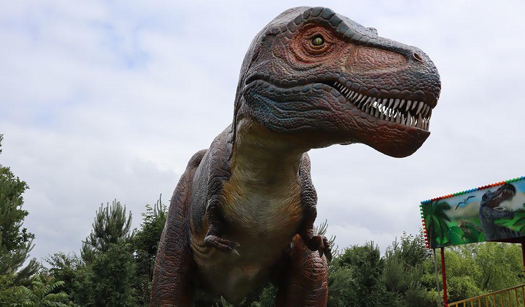 All-inclusive ticket Dinopark Landgoed Tenaxx